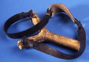 Afrikansk slangebøsse fotograferet i 1984