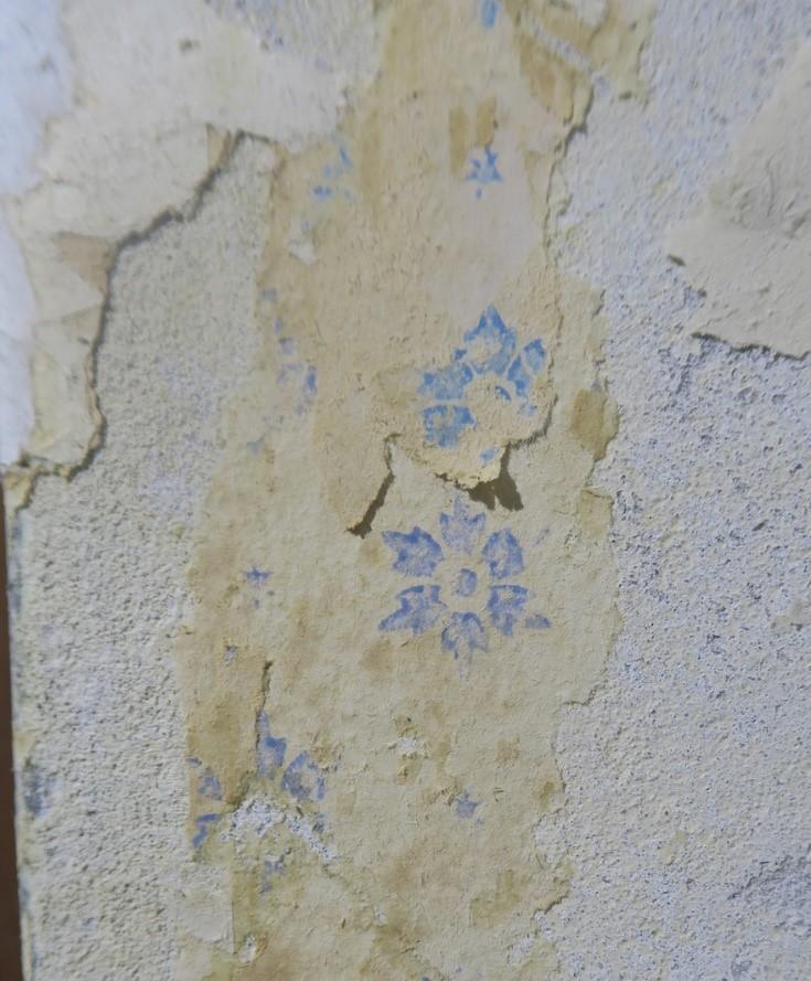I husets entré blev der fundet rester af et tapet med stiliserede kornblomster. Foto: Nationalmuseet, Johanne Bornemann Mogensen.